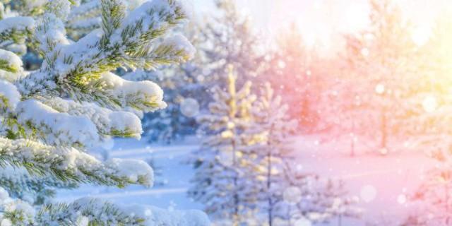 | 【2019年12月25日早朝・無料】すべての子どもたちへ「クリスマスの祈り」無料遠隔ヒーリング